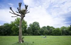 "Documenta Kunst in Kassel - Penone Baum ""Idee di Pietra"""